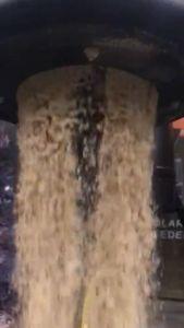Rice Bran Feeder